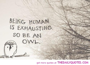 Being human owl