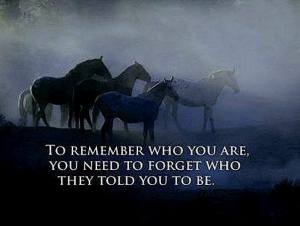 wild horses remember you