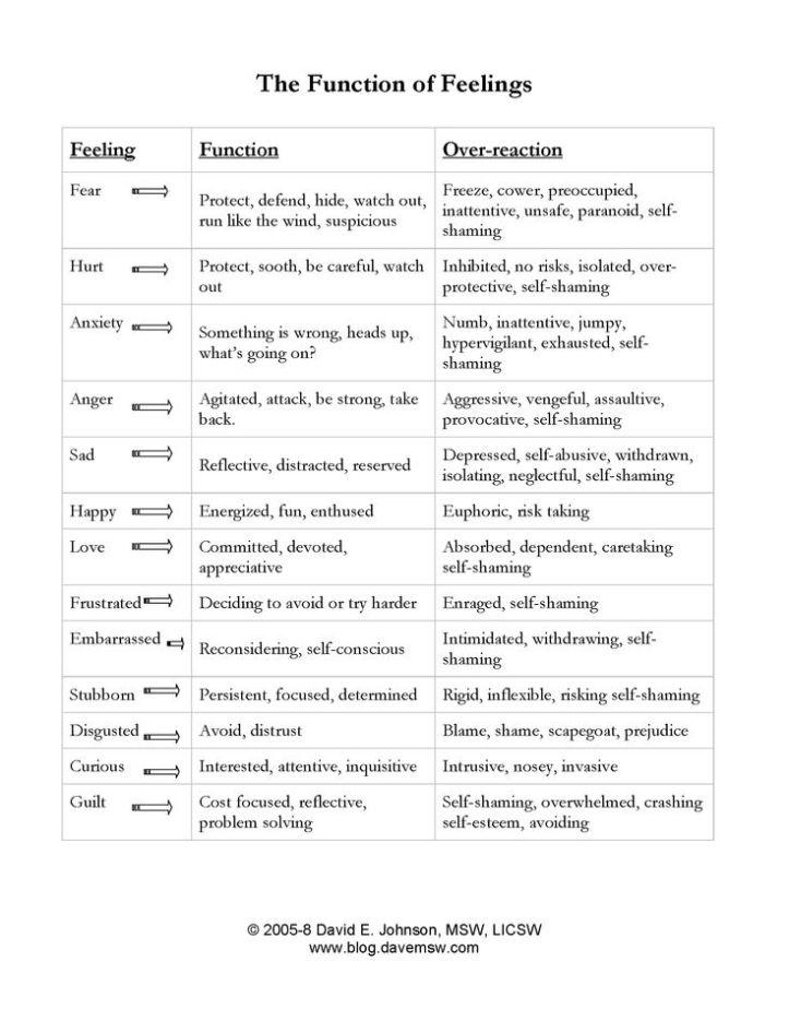 Function of Feelings