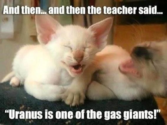 Cats-laughing-over-uranus