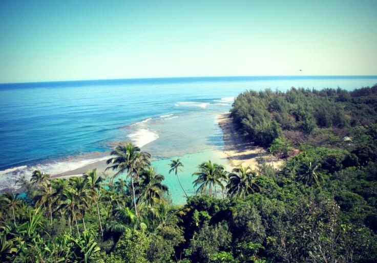 paradise by cheri lucas rowlands