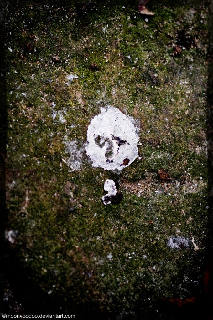 PooSkull