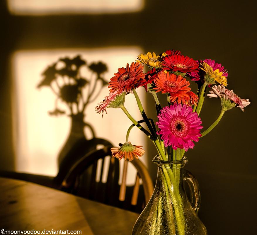 BouquetShadowy