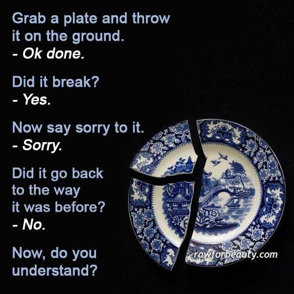 the broken plate