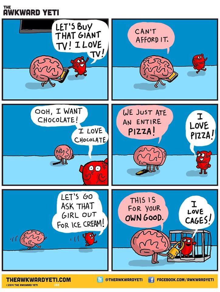 Heart and Brain - The Awkward Yeti