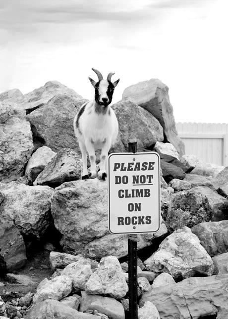 Don't climb on rocks
