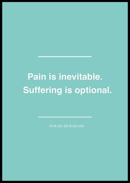 pain:suffering - murakami