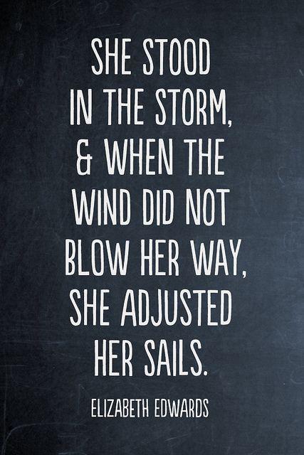 the storm - Elizabeth Edwards