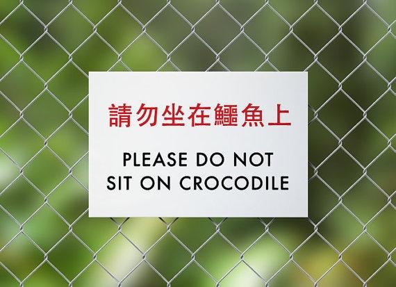 beware of crocodile sitting