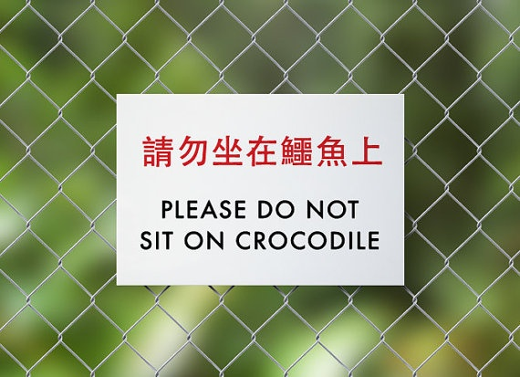 beware of crocodile sitting