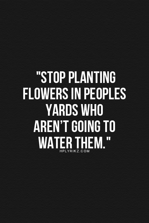 planting flowers...