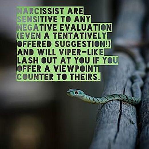 narcissist sensitivity sting