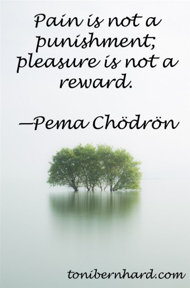 Pema chodron on pain and pleasure