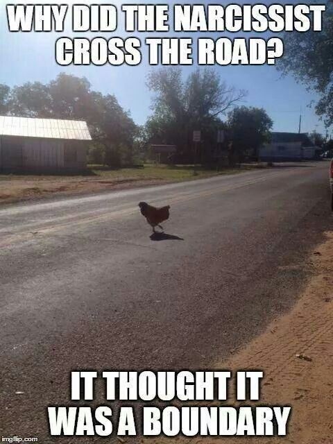 why did the narcissist cross the road?