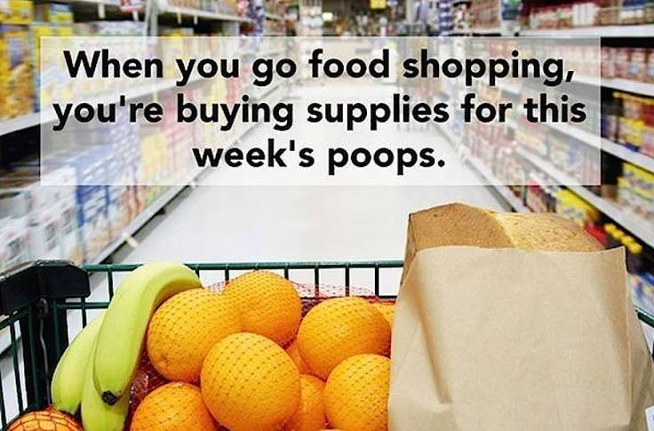 shopping for poops