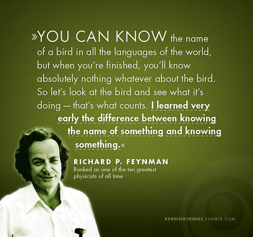 birds - richard feynman