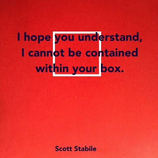the box - scott stabile