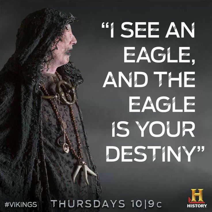 the eagle - vikings