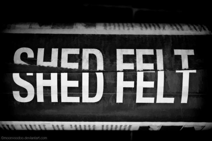 Shed what you Felt