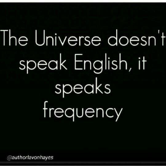universal-lingo