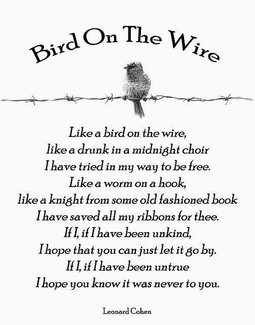 bird-on-the-wire-leonard-cohen