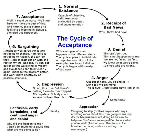 cycle-of-acceptance
