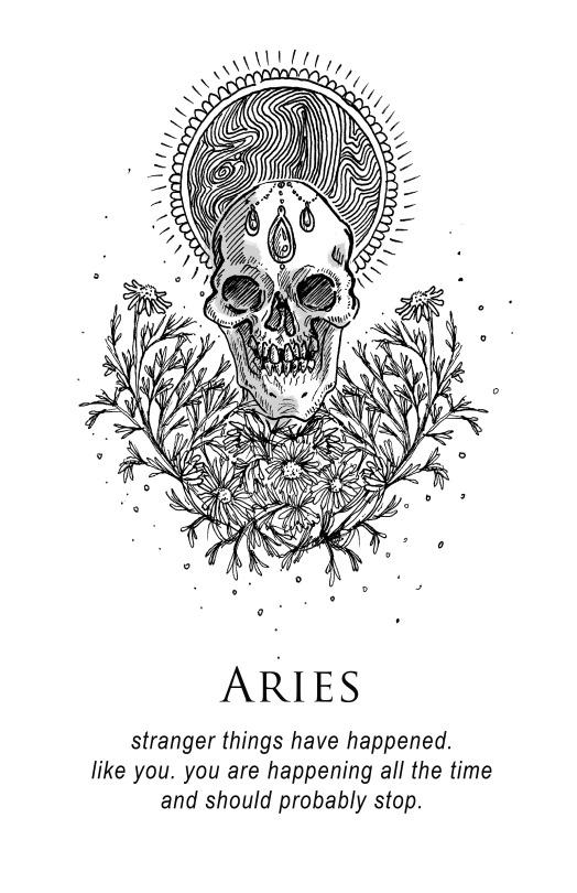 aries-musterni-illustrates