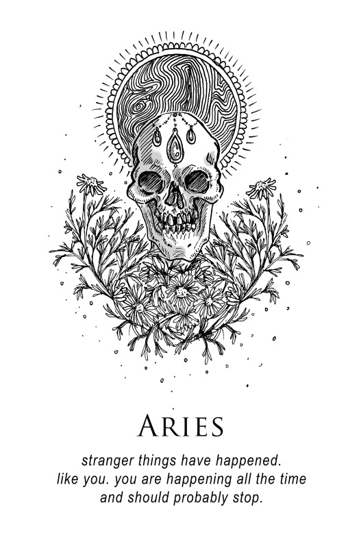 aries-musterni-illustrates